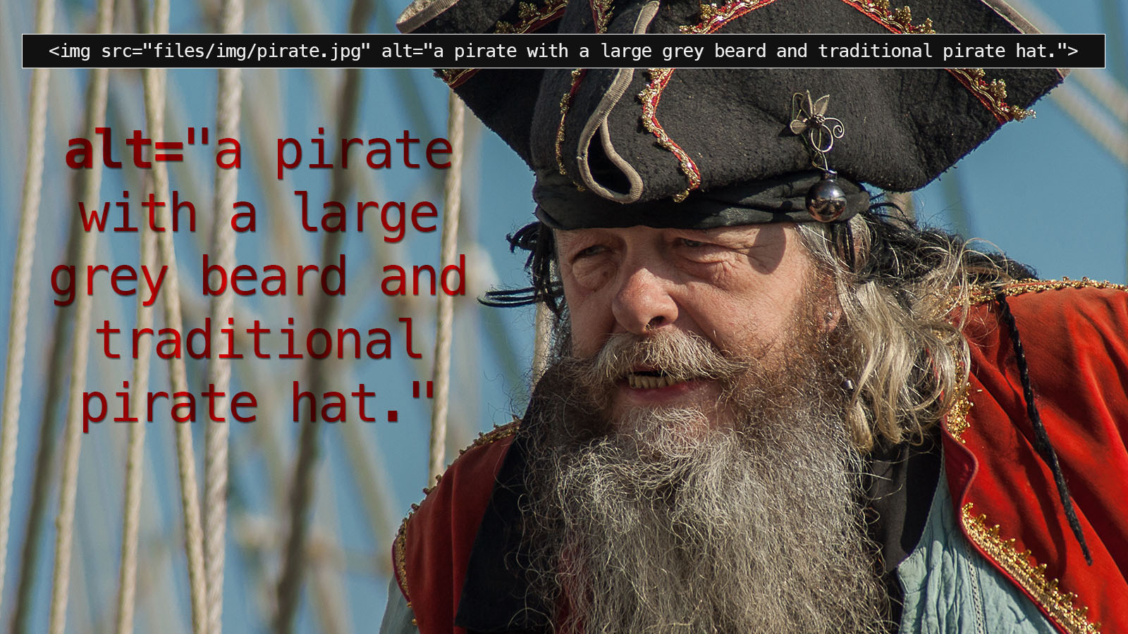 A composite image showing the importance of image alt tags - the basis of which is a pirate with a large grey beard and traditional pirate hat and an alt tag which describes exactly that.