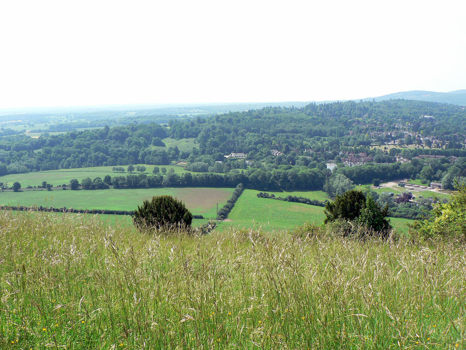The view from the summit of Box Hill, Surrey, UK.